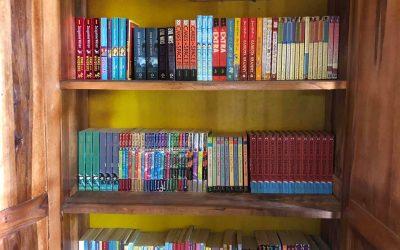 New book cupboards ready at Linda Community School