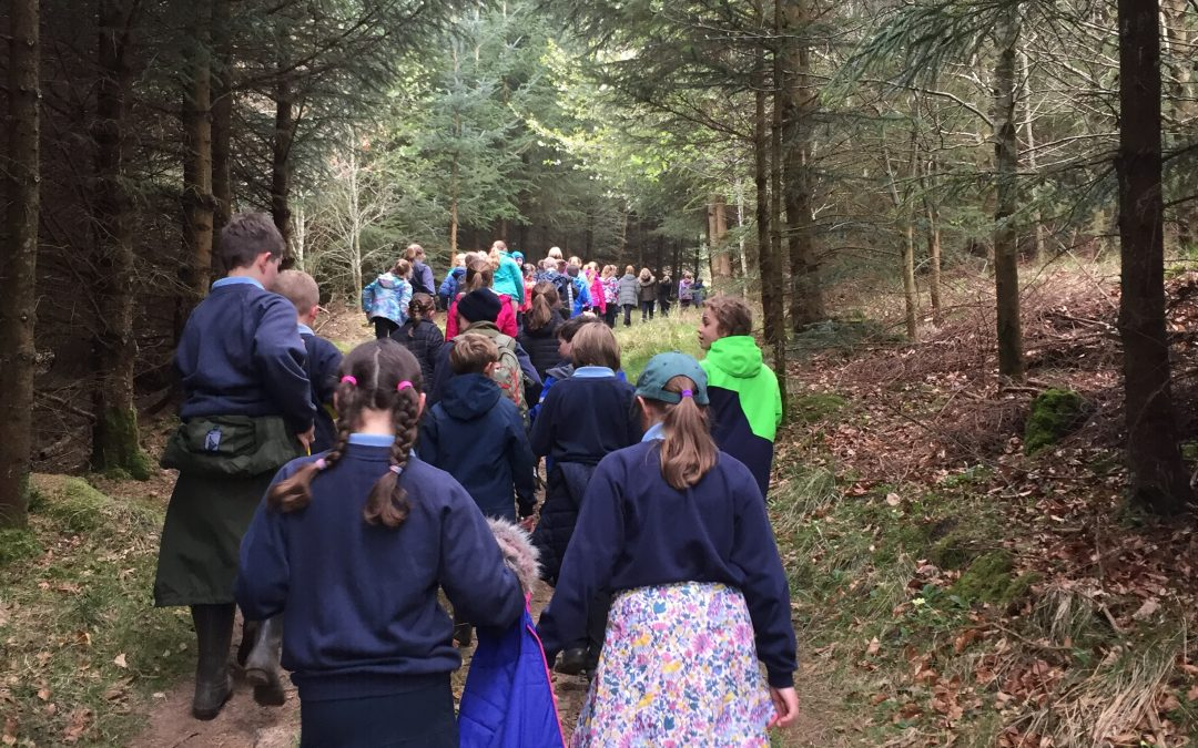 Northumberland school sponsored walk