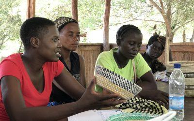 Meet the Zambezi Empowerment Initiative!